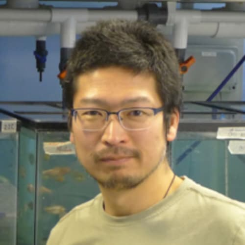 Dr Yoshiyuki Yamamoto